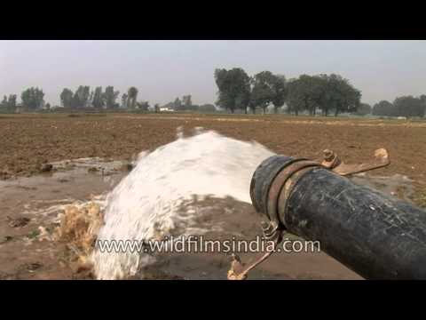 Pumping ground water for agriculture in India