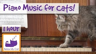 Soothing Piano Music for Cats, Music to Calm Cats in Anxiety Inducing Situations 🐱 Music for Cats!