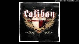 Watch Caliban Stand Up video