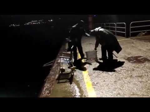 Pesca nocturna con recompensa en Celeiro