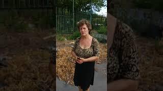 Живодёр в Мариуполе расчленил щенка на глазах у людей и кинулся на женщину с ножем