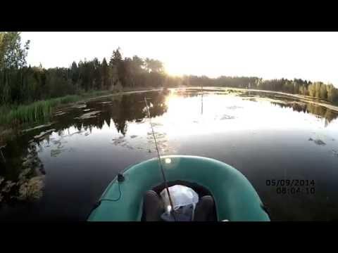 Ловля пассивной щуки на спиннинг в сентябре (видео-отчет) Рыбалка 5 сентября 2014 Поймал -отпустил;)