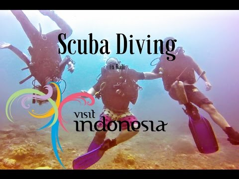 This is Insane! Scuba Diving in Bali!