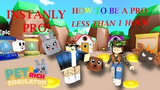 How To Instantly Become A Pro In Pet Rich Simulator (Roblox)