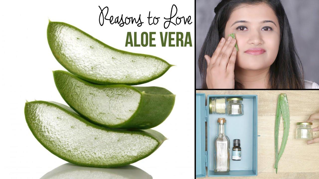 8 Amazing Beauty Uses Of Aloe Vera  Easy Tips & Tricks