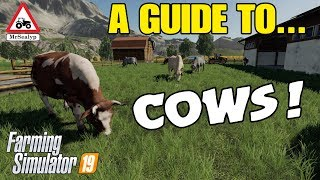 A Guide to... COWS! Farming Simulator 19, PS4, Assistance!