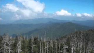 Misty Mountain Dream by Marion Drexler