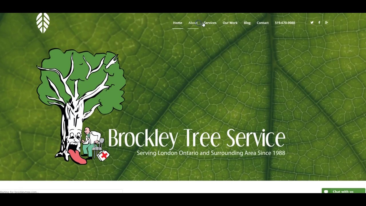 Brockley Tree Removal Slyfox Web Design Marketing Web Design Project Youtube