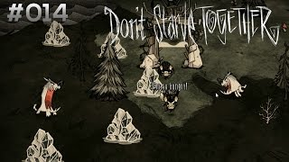DON'T STARVE TOGETHER #014: Rufe Regen und er kommt! [HD+] | Let's Play Don't Starve