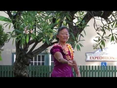 Koali with Maui Jam Band