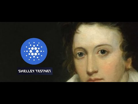 Cardano FINAL Shelley Testnet BY FRIDAY; 'Transition...to New Coins'; Bitcoin In Space
