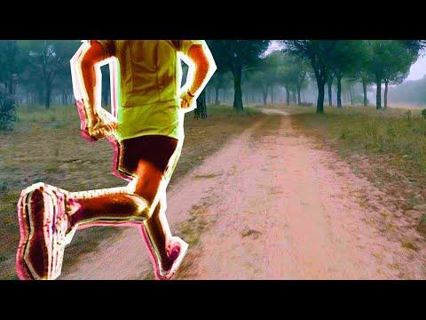 Jogging Music with Virtual Scenery for Treadmills 180190 BPM Runseek #06