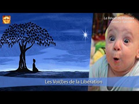 Le Réveil du Phoenix, Ép. 3 : les Voi(l)es de la Libération