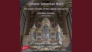 Trio super Allein Gott in der Höh sei Ehr, BWV 664