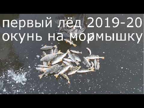 Первый лёд 2019-2020.Зимняя рыбалка 2019-20 Ловля окуня на мормышку, на мотыля