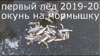 Первый лёд 2019 2020 Зимняя рыбалка 2019 20 Ловля окуня на мормышку на мотыля