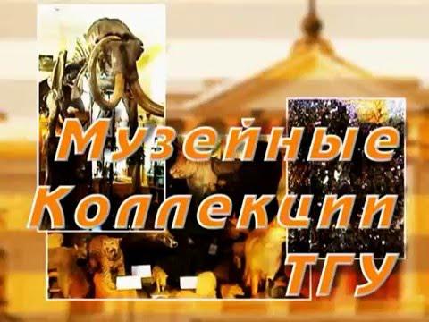 Красная книга Томской области из коллекции Зоологического музея ТГУ