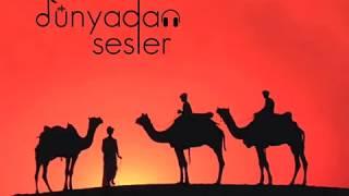 Desert Night - Rebab Resitali