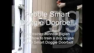 Pebble Smart Doggie Doorbell, Training Techniques