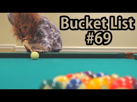 Teen Wolf Plays Billiards | Bucket List #69
