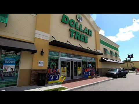 $1 EVERYTHING COST ONLY A SINGLE DOLLAR TREE MIAMI..(Unstoppable Tv)