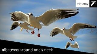 Angielski Idiom 3 Albatross Around One S Neck