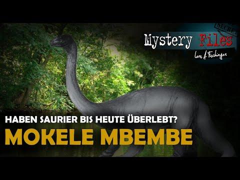 Die Jagd nach Mokele Mbembe: Haben Dinosaurier bis heute überlebt? (Kryptozoologie Kongress 2019)
