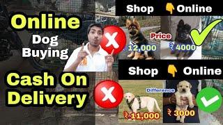 Online dog कैसे  buy किया जाता है ? How to buy dog online?