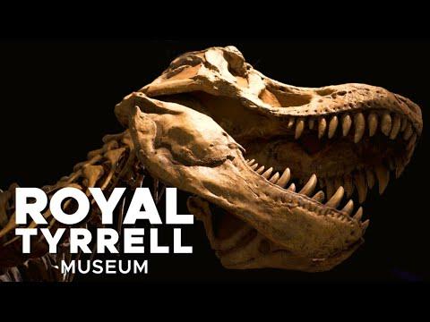 Royal Tyrrell Museum Of Paleontology Full Tour In 4K | Dinosaur Museum In Drumheller Alberta