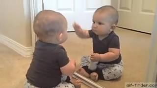new funny videos in 2017 /funny vidos /babys/babys funny videos.