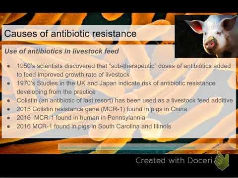 bio 9-13-17 antibiotics in livestock feed