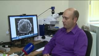 Ученые Тюменского государственного университета открыли два новых вида клещей(, 2015-08-24T13:19:43.000Z)