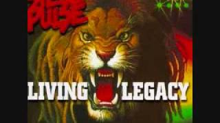 Steel Pulse - Back To My Roots (Living Legacy)