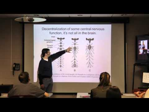 Dr. Dan Hahn | Associate Professor, Insect Physiology