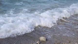 Тирренское море (Капри)