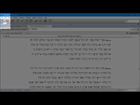 Accordance Instant Details and Lexicon for Hebrew