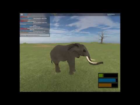Mini Elephant Migration Turns out to be a Fail Read Desc