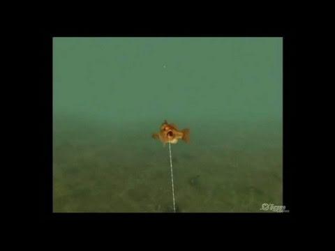 Reel Fishing: Angler's Dream Nintendo Wii Video -