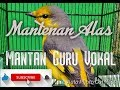 Mantenan Alas Mantan Guru Vokal Mantab  Mp3 - Mp4 Download