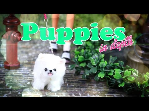 DIY - How to Make: Cute Doll Puppies - In Depth - Handmade - Craft - 4K