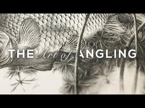 The Art Of Angling - Carp Fishing In Devon