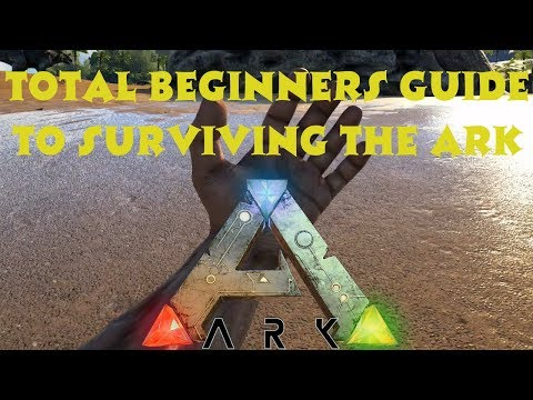 how to use a new player ark singeplayer