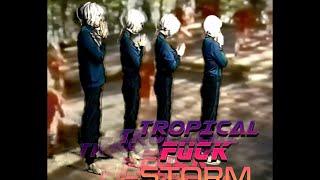 Tropical Fuck Storm - Suburbiopia (Official Video)