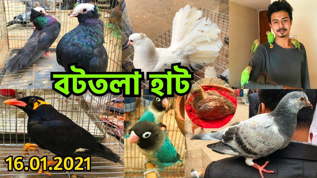 তীব্র শীতে বাজারে কেনা বেচায় ধীরগতি | বর্তমান দাম জানুন | বটতলা হাট || Bottola Pet Market (V - 215)