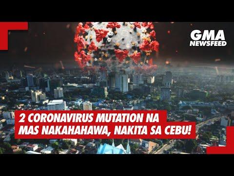 2 coronavirus mutation na mas nakahahawa, nakita sa Cebu!   GMA News Feed