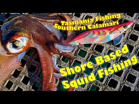 How To Catch Squid From Shore : Fishing Southern Calamari In Tasmania