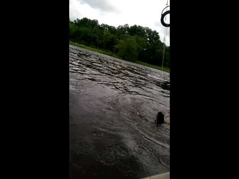 Catfishing in kayak in rancocas creek nj