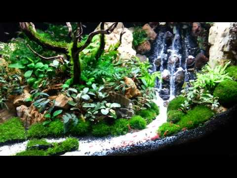 Diy underwater waterfall sand fall in aquarium funnycat tv for Aquarium waterfall decoration