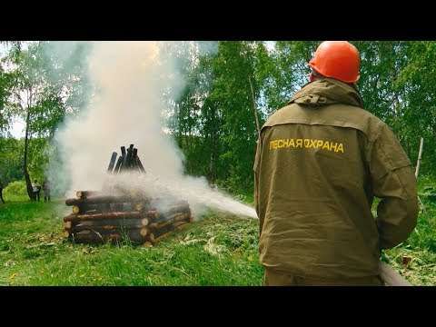 На фото Лесники и пожарные провели совместные учения изображение