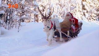Дива та аномалії на Новий рік та хто такі злі демони Різдва